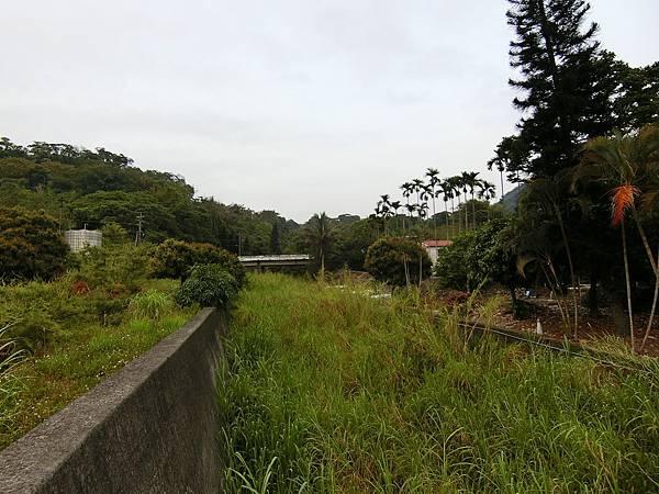 龍谷橋方向