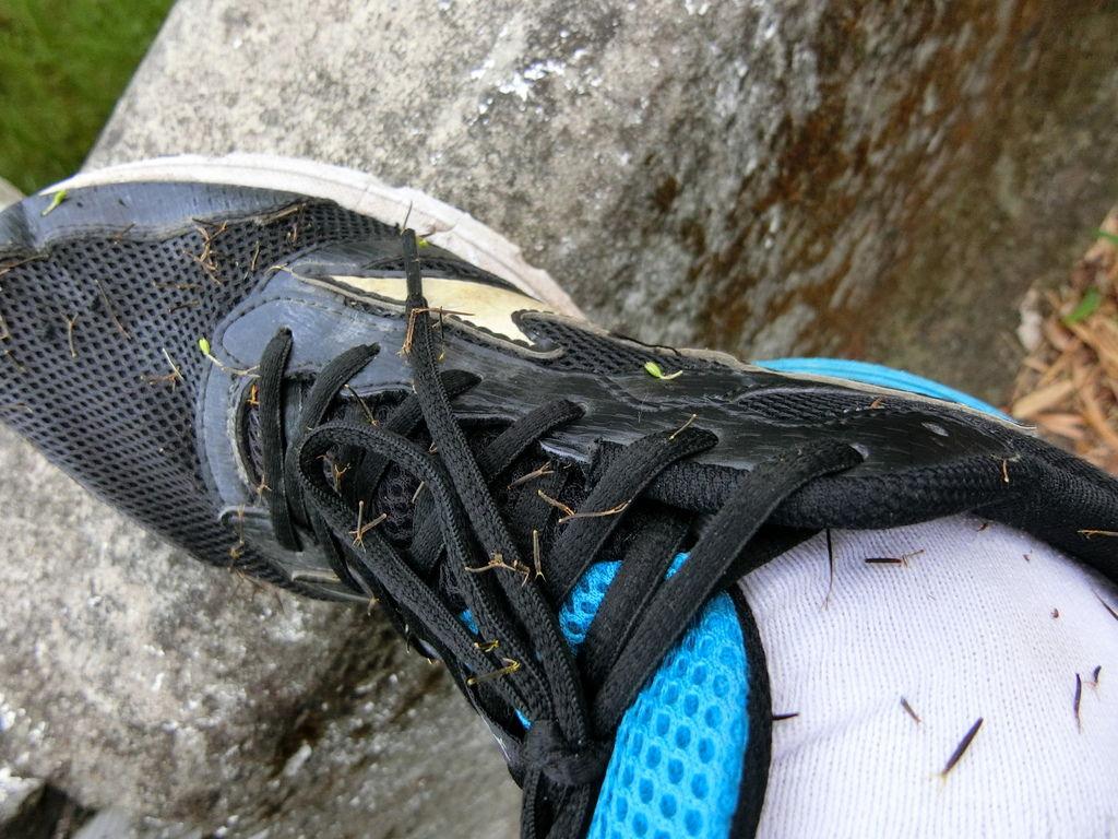 紮滿鬼針草的鞋褲