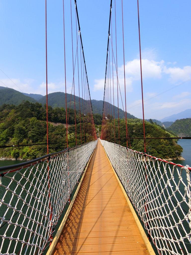 新佳陽吊橋(梨山)