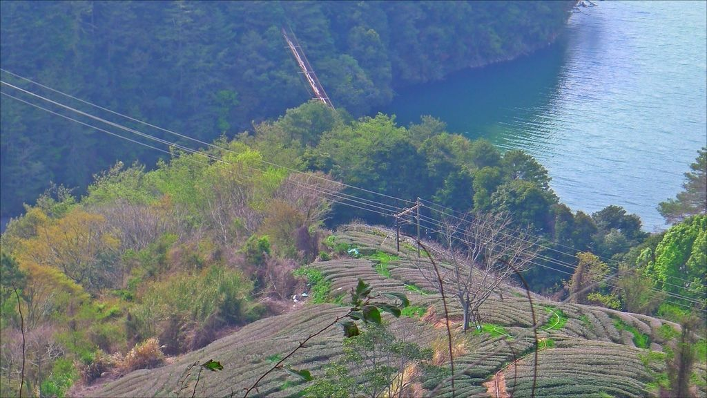 舊佳陽吊橋