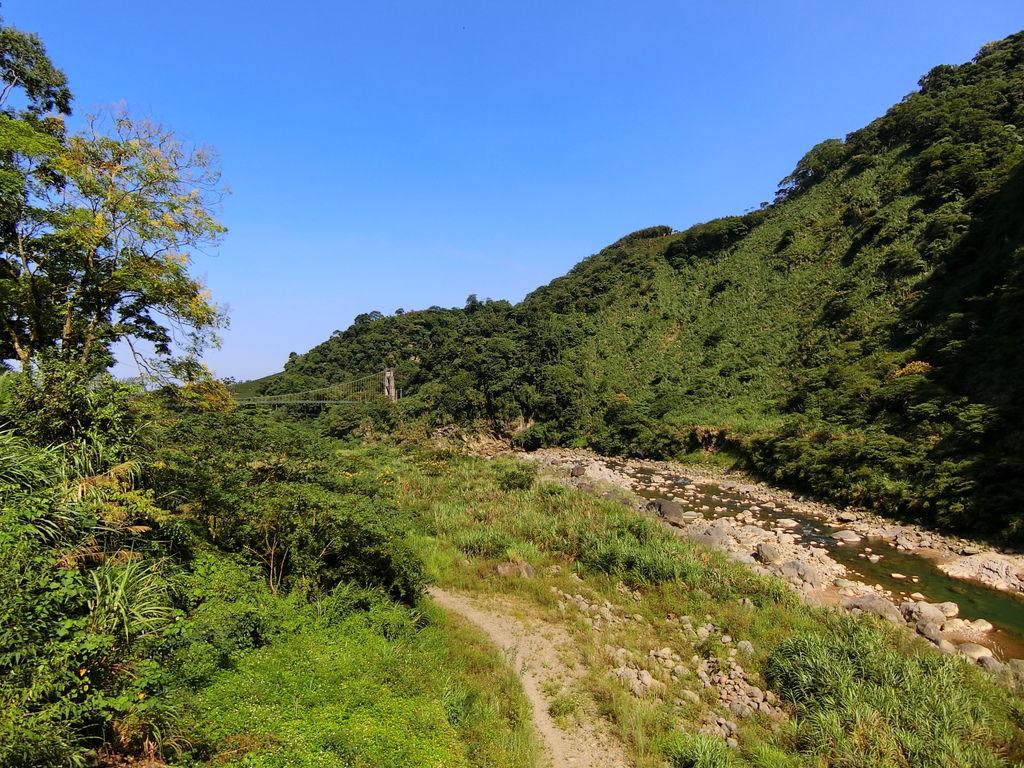 瑞龍吊橋(竹山)