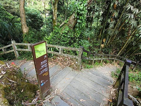 龍宮瀑布遠觀平台岔路