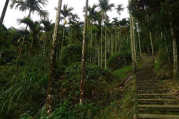 無限階梯......