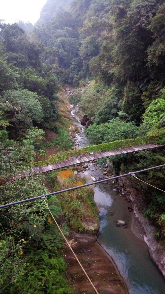 橫路吊橋(鹿谷)
