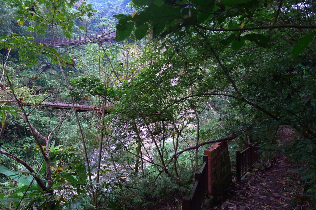 半天橋&橫路吊橋(鹿谷)