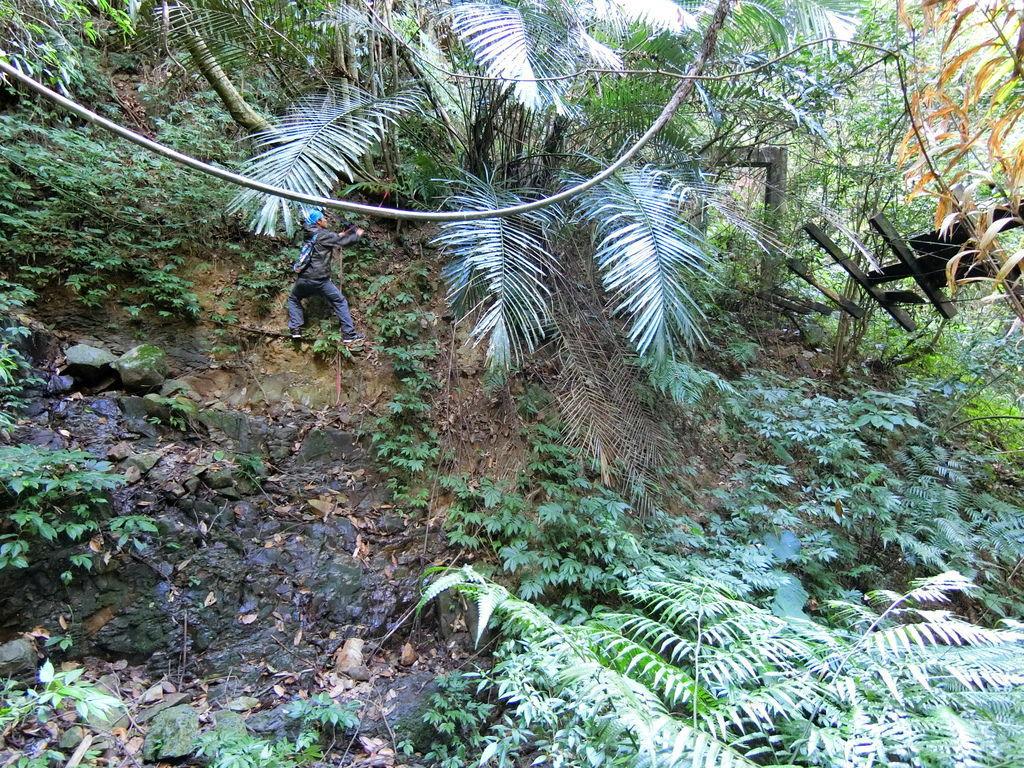 吊橋跨越溪谷