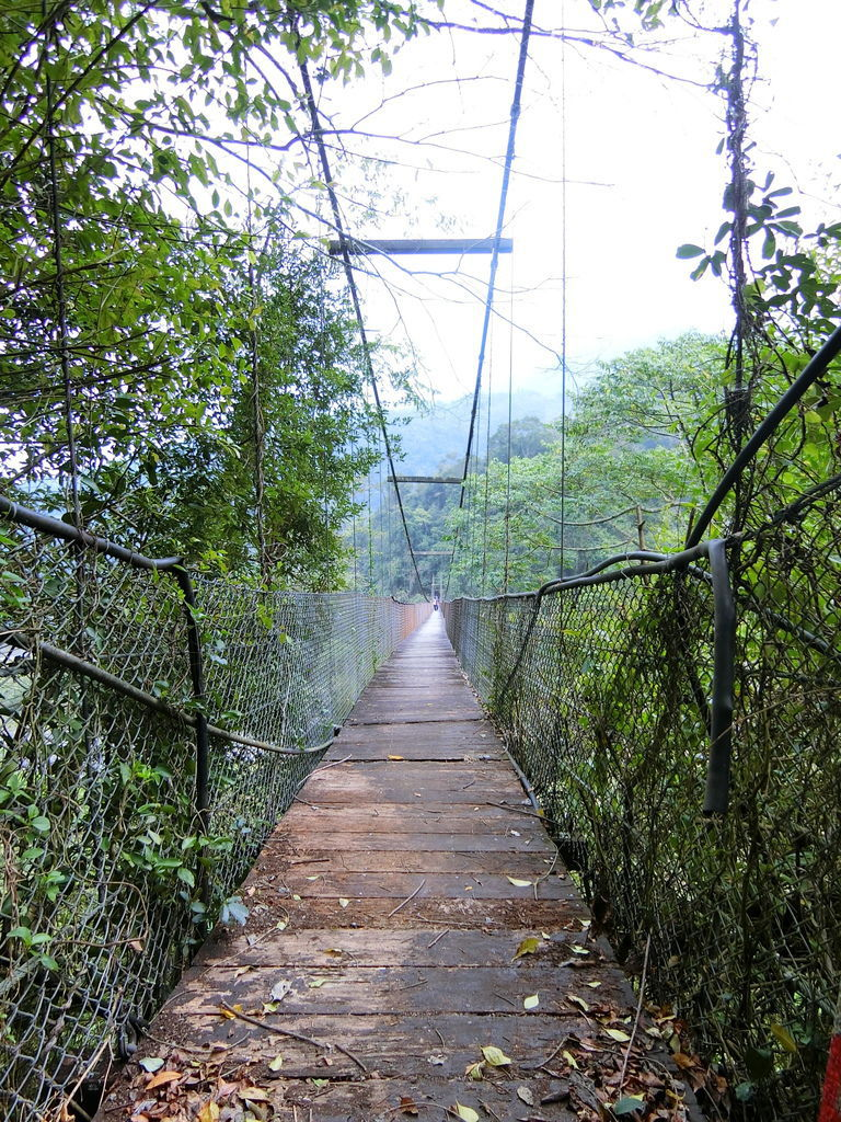 清泉三號吊橋(五峰)