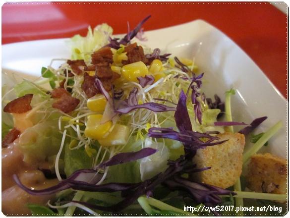 food13IMG_4776.JPG
