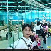 台北市立動物園~大貓熊館