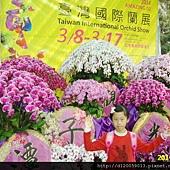 後壁~2014臺灣國際蘭展