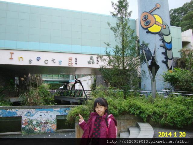 台北市立動物園~昆蟲館