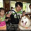 楠西 梅嶺--太山梅子雞