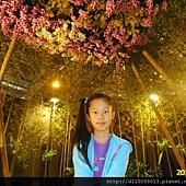 2015台灣國際蘭展
