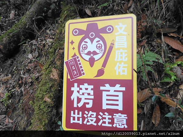 杉林溪 + 溪頭 + 妖怪村