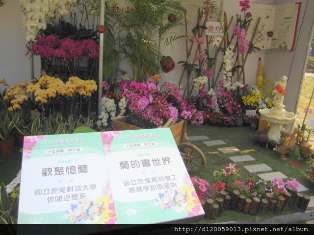 2017台灣國際蘭展