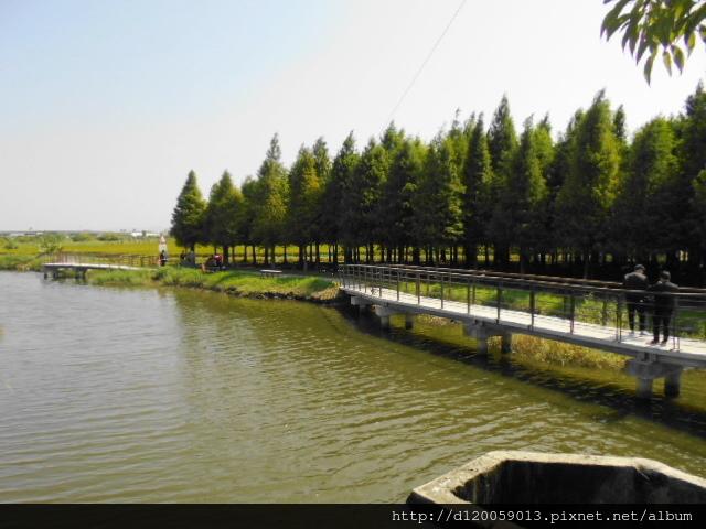 菁埔埤 - 六甲林鳳營