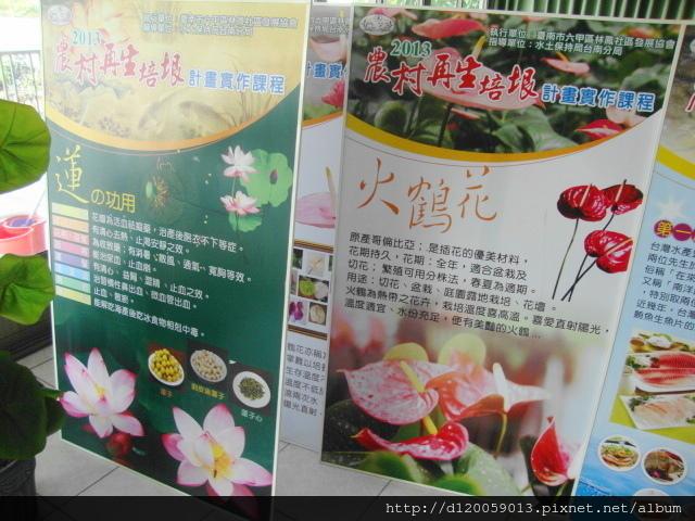 六甲 - 蓮花世界