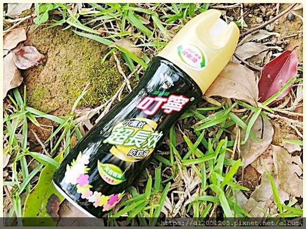 叮寧小黑蚊超長效防蚊液2.jpg