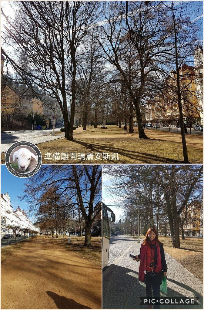 Collage 2017-03-27 14_28_57.jpg