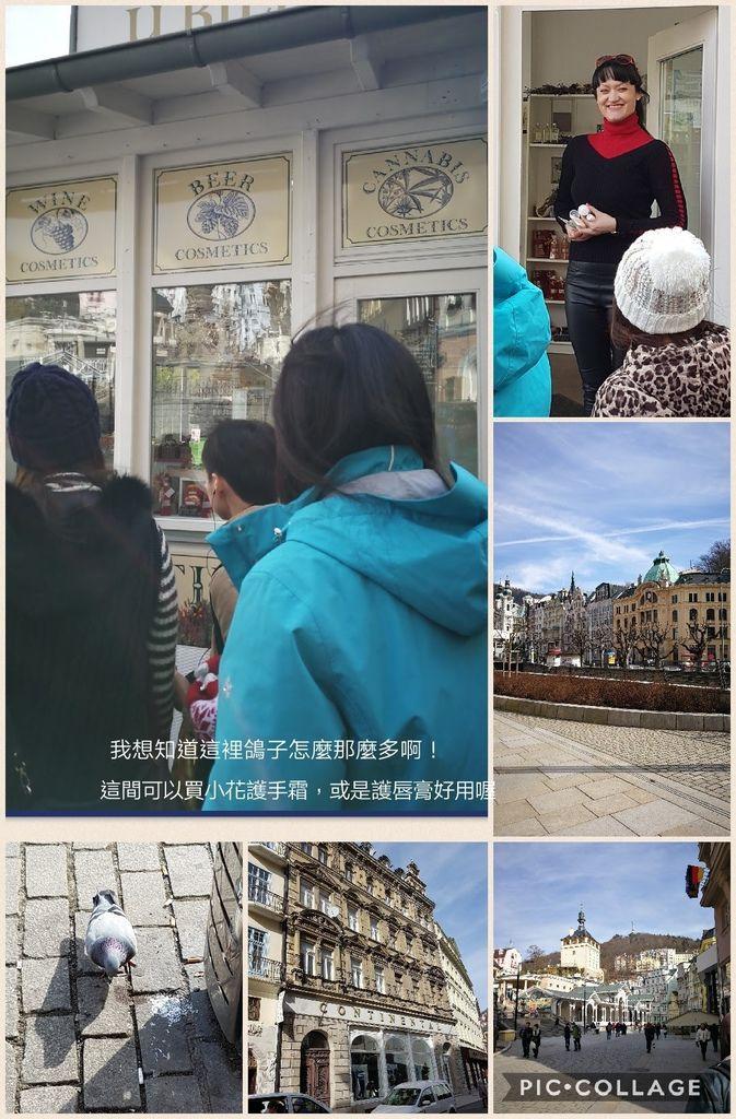 Collage 2017-03-27 16_19_30.jpg