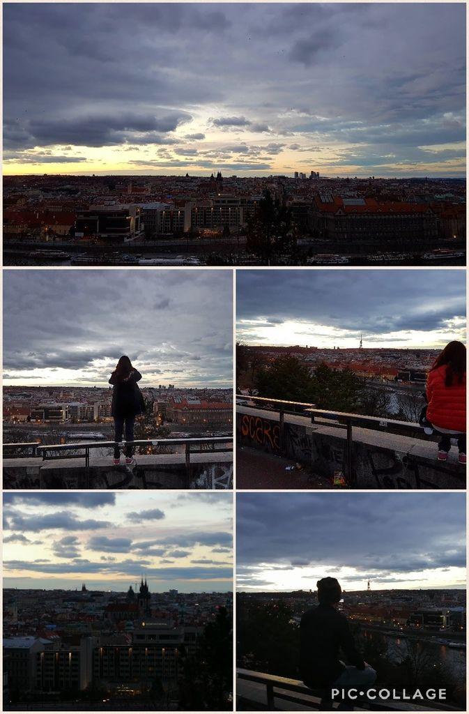 Collage 2017-03-27 18_31_43.jpg
