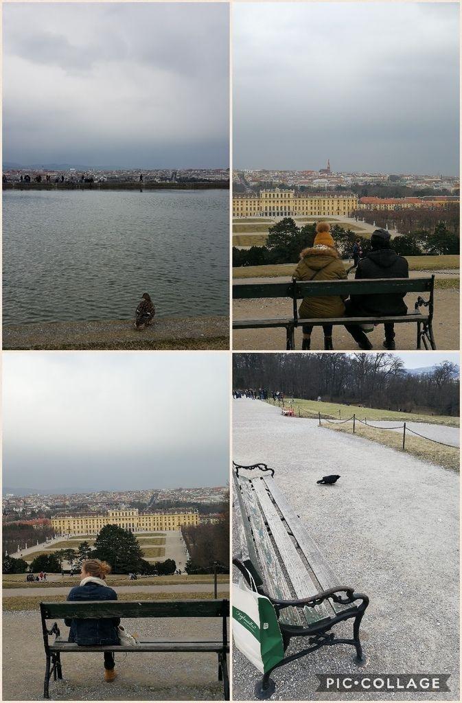 Collage 2017-03-28 17_31_25.jpg