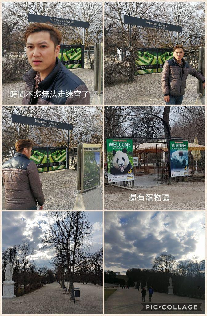 Collage 2017-03-28 17_28_05.jpg