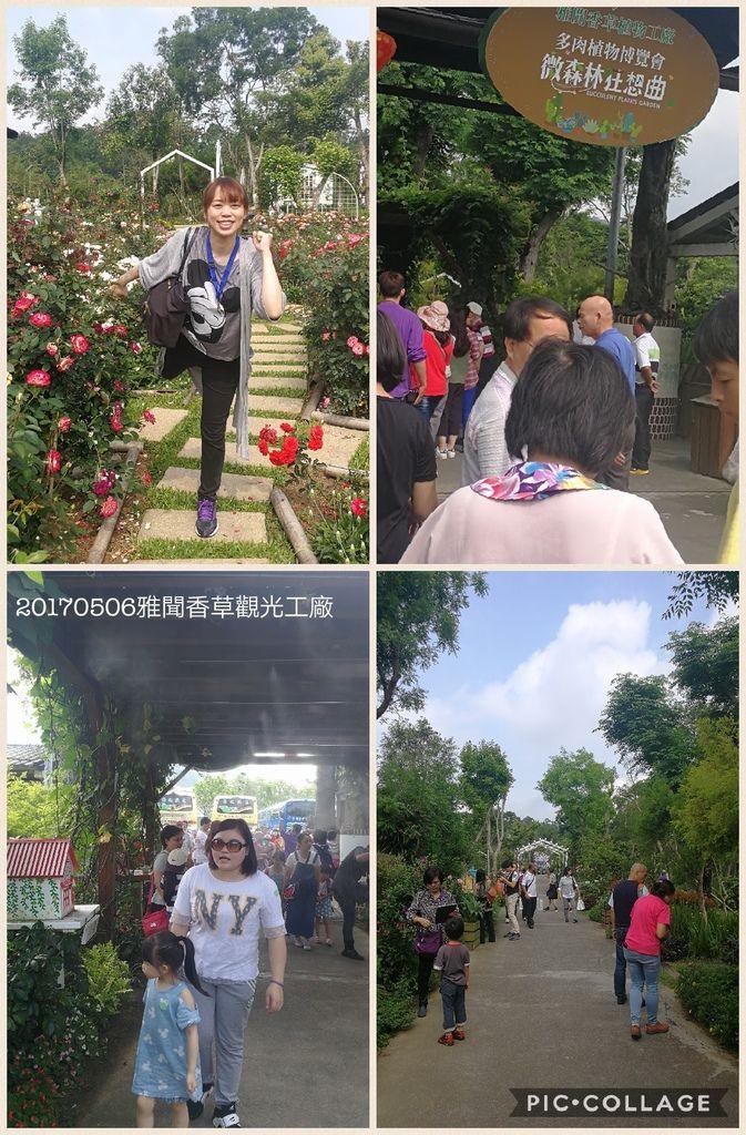 Collage 2017-05-06 10_18_35.jpg