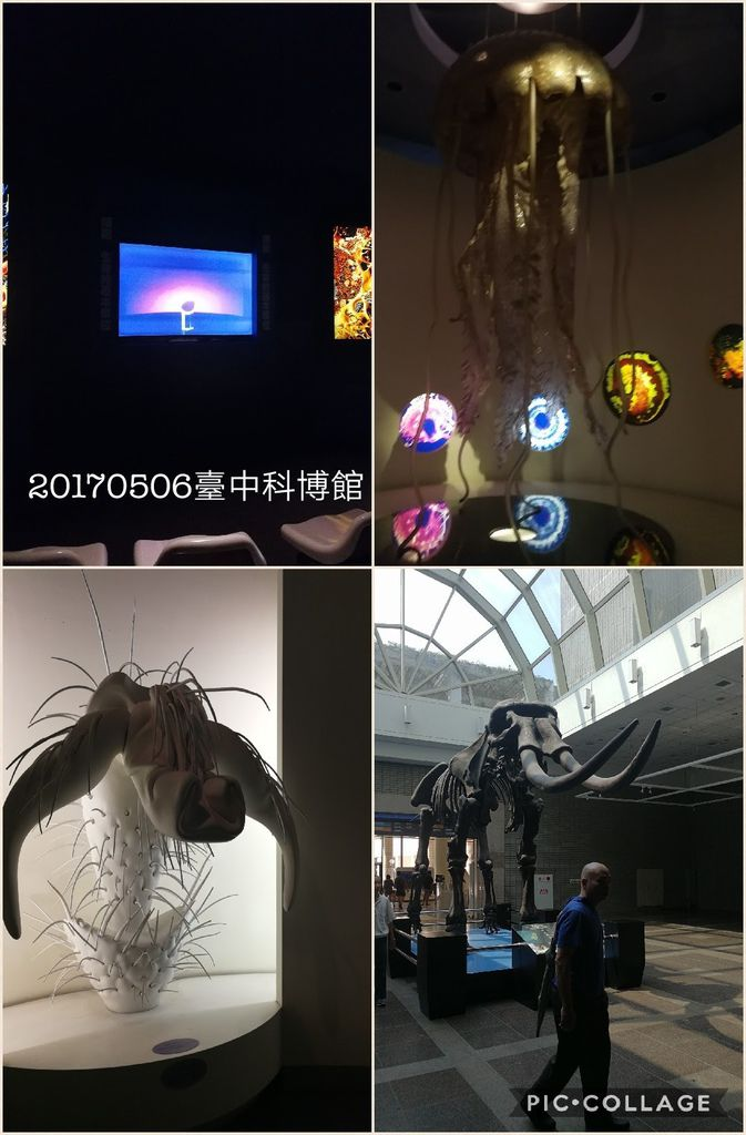Collage 2017-05-07 18_13_03.jpg