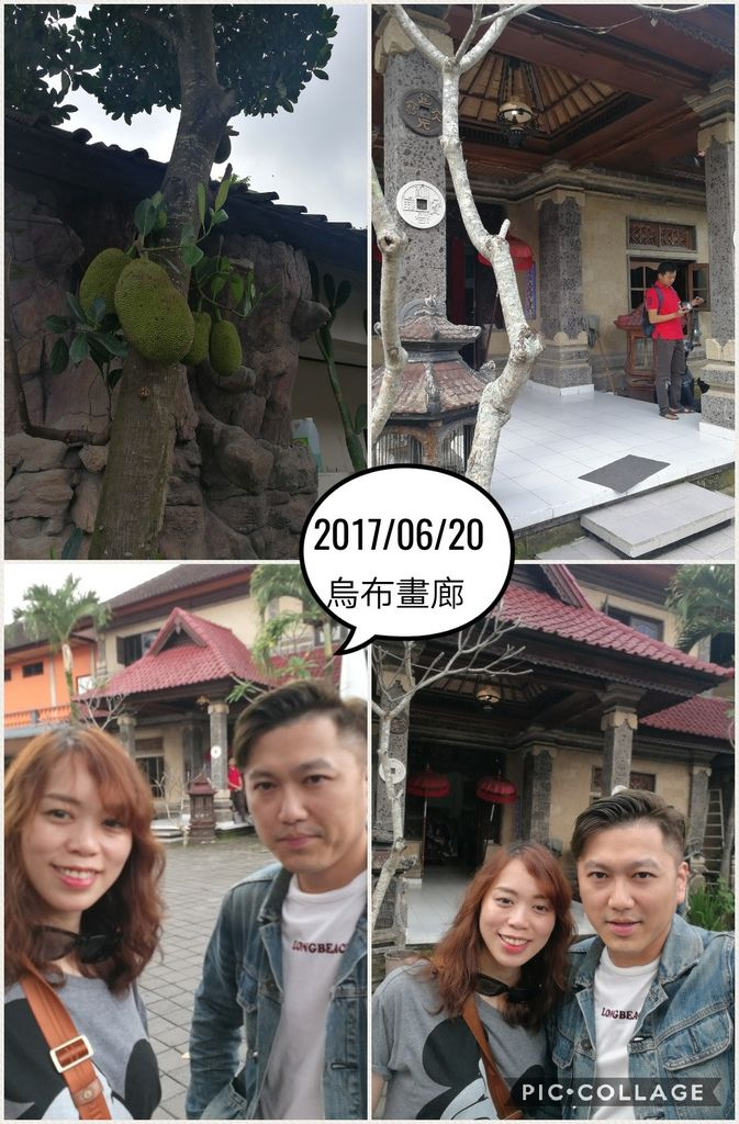 Collage 2017-06-20 14_32_52.jpg