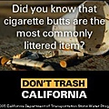 CA cigarette butts.jpg