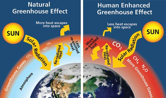 Greenhouse-effect.jpg