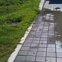 水管破裂漏水情形全景