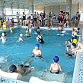 暑期游泳池 (2).JPG