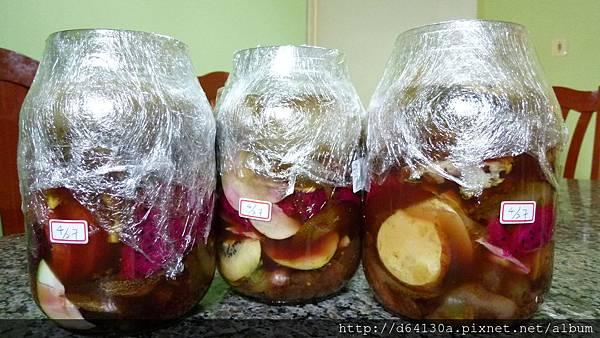 十種水果酵素