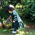 IMG_3502_副本.jpg