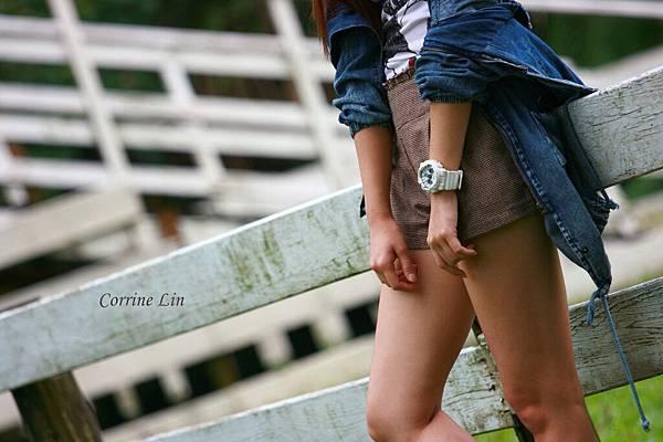 DPP_Corrine Lin2