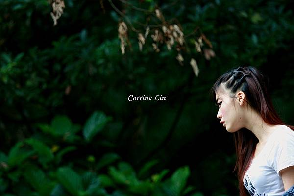 DPP_Corrine Lin6