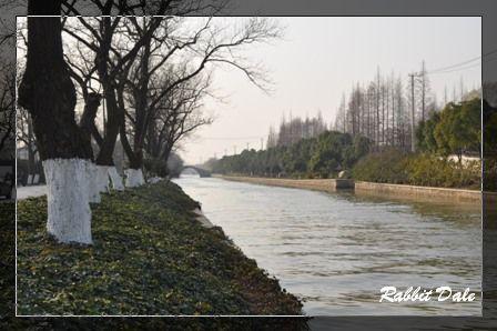 nEO_IMG_蘇州_1101.jpg