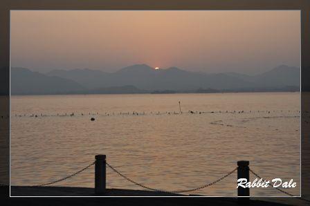nEO_IMG_西湖夕陽_1679.jpg