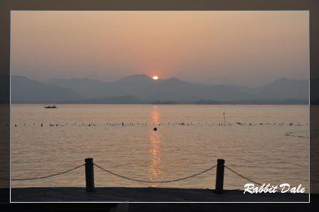 nEO_IMG_西湖夕陽_1669.jpg