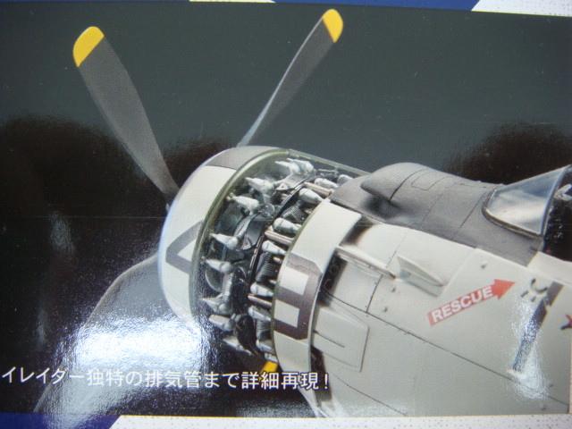 DSC08521.JPG