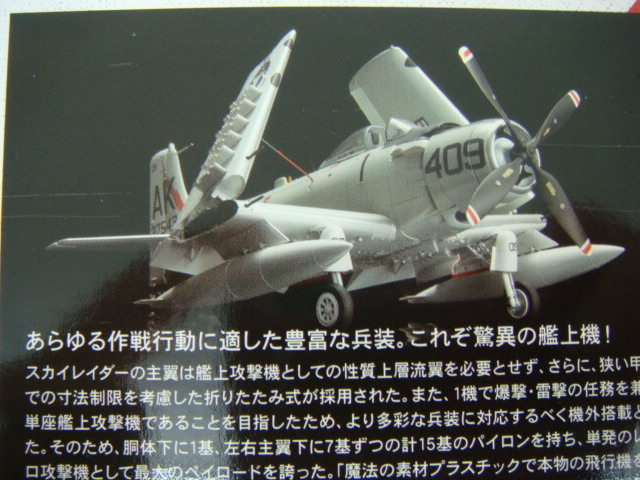 DSC08519.JPG