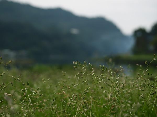 2011_0224_093247.JPG