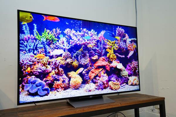 Sony Brivia 4K HDR電視(55X9300D)-195
