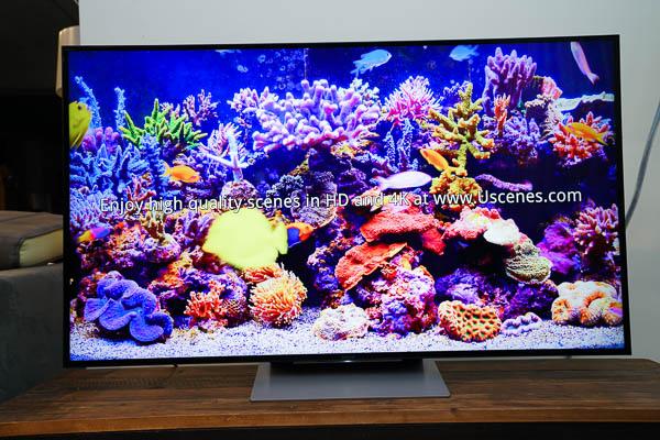 Sony Brivia 4K HDR電視(55X9300D)-197