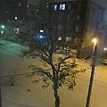 晚上開始嘩啦嘩啦下很多雪~