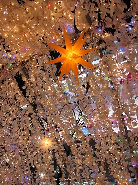 晚上逛雪祭すすきの和大通會場