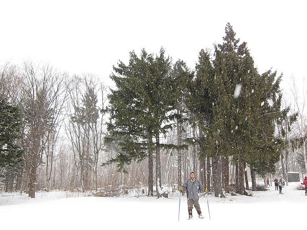 大雪中的阿爸