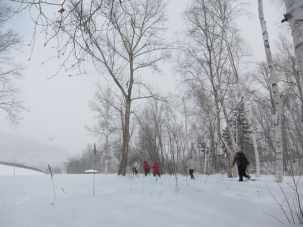 雪中的一行人